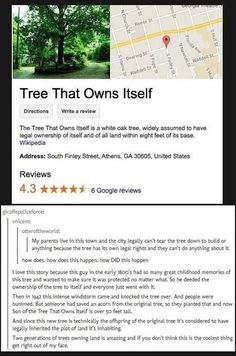 "On Wikipedia, type in ""Tree That Owns Itself"". ----This reminds me of a tree that we have in Baytown, Texas. It's a big, beautiful tree right in the middle of the road. The pavement literally splits in half and cars have to drive around it. It's so iconic and well-known in the area that it's been the logo for the City of Baytown for as long as I can remember, probably since LONG before I was born. Click this link to read about the famous ""Big Oak in Baytown""…"