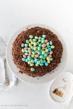 This chocolate Easter egg nest cake is so delicious and so easy to make! Your family and friends will be so impressed with you this Easter! Chocolate Squares, Chocolate Icing, Easter Chocolate, Best Ever Chocolate Cake, Egg Nest, Mini Eggs, Unsweetened Chocolate, Cake Recipes, Baking Recipes