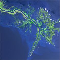 Aeriel view of the Mississippi River Delta.