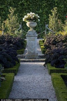 Formal Garden Designs and Ideas Have you ever really thought about how many people see the outside of your home? Formal Gardens, Outdoor Gardens, Landscape Design, Garden Design, Garden Urns, Boxwood Garden, Pot Jardin, Urn Planters, Classic Garden