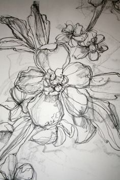 Floral illustration with pen and pencil #HelloBlackAndWhite