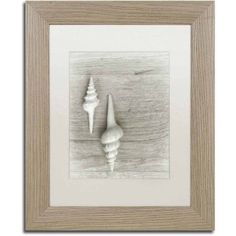 Trademark Fine Art 'Two White Shells' Canvas Art by Cora Niele, White Matte, Birch Frame, Size: 11 x 14, Multicolor