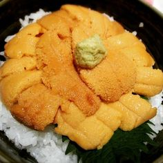"""Hakodate Uni Murakami """"There is a shop in Sapporo and Hakodate."""" The only sea urchin processing retail stores in Japan! Here you can enjoy plenty of fresh sea urchin! You can eat it throughout the year a """"raw sea urchin"""" additive-free and without any alum. Taste of freshly caught sea urchin of bitterness is very delicious! The store has a water tank, you can also enjoy active seafood. http://www.uni-murakami.com/ FACEBOOK= https://www.facebook.com/wabisabi.mode.hokkaido/ #札幌 #北海道 #sapporo…"""