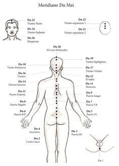 Acupressure Benefits Natural Du Meridian - ECAN International school of acupuncture - Learn… Acupuncture Points Chart, Acupressure Points, Cupping Therapy, Massage Therapy, Acupuncture Benefits, Reflexology Massage, Massage Tips, Traditional Chinese Medicine, Qigong