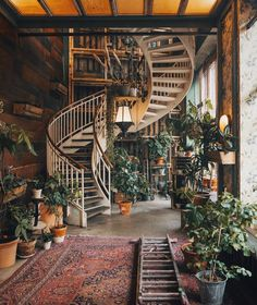 #interiordesign #plants #stairs #home