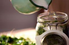 Jitrocelový sirup proti kašli — Recepty — Herbář — Česká televize Home Canning, Nordic Interior, Health Advice, Hana, Country Life, Mason Jars, Smoothie, Remedies, Health Fitness