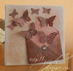 ZCDL: Motýle z obálky