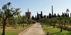 La Torre Cajasol desde el Monasterio de la Cartuja.