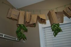Drying Herbs for Beginners - you don't HAVE to have a dehydrator to dry herbs. Mine are hanging on the clothesline in the sun :)