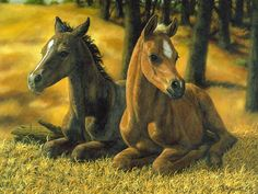 Browse through images in Crista Forest's Horses collection. equestrian and western art Horse Drawings, Animal Drawings, Brown And White Horse, Oil Pastel Colours, Horse Wallpaper, Horse Artwork, Rock Painting Ideas Easy, Baby Horses, Thing 1