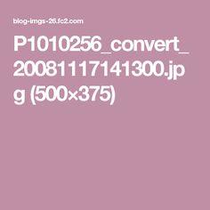 P1010256_convert_20081117141300.jpg (500×375)
