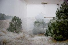 Sans titre by Joelle Mariou Leo Buscaglia, Photography Camera, Fine Art Photography, Creative Photography, Landscape Photography, New Roman, Joelle, Blur Photo, Green Life