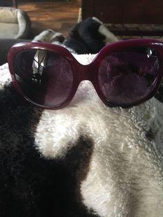 dbc620a32f Womens Fossil Sunglasses  fashion  clothing  shoes  accessories   womensaccessories  sunglassessunglassesaccessories (
