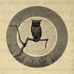 Printable Owl Digital Image Moon Antique Download Bird Graphic Jpg Png Eps 18x18 HQ 300dpi No.100 @ vintageretroantique.etsy.com #DigitalArt #Printable #Art #VintageRetroAntique #Digital #Clipart #Download