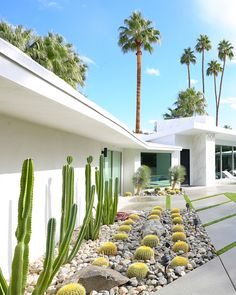 Where To Stay in Palm Springs for Modernism Week The question I get asked is: Where to stay in Palm Springs. Especially with Modernism Week coming up (will I see you there? While Palm Springs is full of fabulous boutique hotels, of which I… Palm Springs Häuser, Palm Springs Style, Colorado Springs, Palm Springs Vacation Rentals, Mid Century Landscaping, Backyard Landscaping, Luxury Landscaping, Landscaping Design, Residential Landscaping