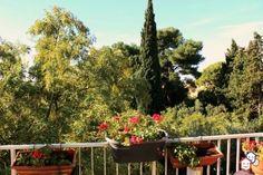 Votre achat immobilier entre particuliers dans l'Hérault réalisé avec cet appartement à Montpellier http://www.partenaire-europeen.fr/Actualites/Achat-Vente-entre-particuliers/Immobilier-appartements-a-decouvrir/Appartements-particuliers-en-Languedoc-Roussillon/Appartement-F3-plein-sud-quartier-residentiel-vue-residence-calme-securisee-ID2922226-20160306 #Appartement