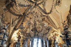 free pictures of Sedlec - Google Search Free Pictures, Prague, The Darkest, Sculpture, Google Search, Book, Czech Republic, Sculpting, Books
