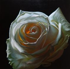 Creation VIV Original oil painting of a white rose,by Vincent Keeling oil on canvas