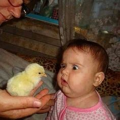 We Love Kids And Everything About Them Pics). Funny photos of kids just being kids. Photos of kids that will make your day. Funny Baby Faces, Funny Baby Pictures, Funny Photos, Cute Pictures, Happy Photos, Sports Pictures, Funny Kids, Funny Cute, Cute Kids