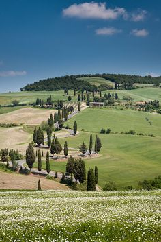 Road from Pienza to Montichiello - Province of Siena, Val D'Orcia, Tuscany, Italy