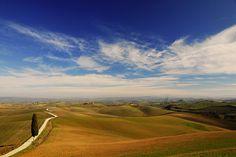 Tuscan Landscape - Paesaggio Senese -