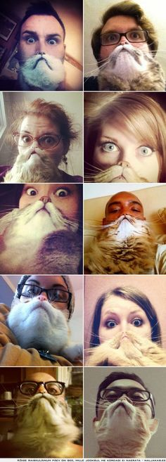 People with cat beards- I had never heard of this til my friend Tammy mentioned it. I MUST try catbearding with my two!