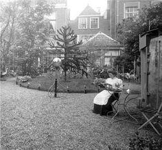 Eind 19e eeuw in de achtertuin van de Hooiengracht nr 15. Leiden Netherlands, Holland, Capri, History, City, Outdoor, Beautiful, Nostalgia, The Nederlands