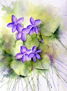 violets - watercolor by lin frye Watercolor Cards, Watercolour Painting, Watercolor Flowers, Painting & Drawing, Painting Flowers, Watercolours, Nature Sketch, China Painting, Illustrations