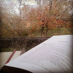 Books on a rainy day