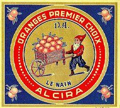 Naranjas Le Nain.  Alzira.
