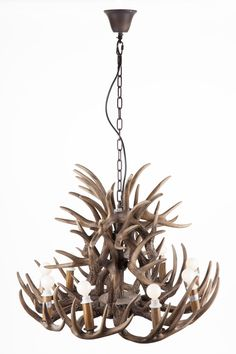 The Antlers Chandelier