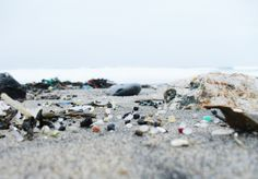 Mikroplastik – 5 Produkte, in denen wir Plastik kaum erwarten   BIORAMA