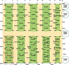 Vegetable Garden Layout | Thoughts On My Garden Layout   Vegetable Gardening  Forum   GardenWeb