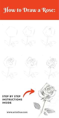 Learn how to draw a rose easy step by step instruction with pictures. Rose Drawing Pencil, Realistic Rose Drawing, Flower Art Drawing, Pencil Art Drawings, Easy Drawings, Beautiful Rose Drawing, Rose Drawing Simple, Basic Drawing, Roses Drawing Tutorial