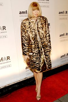 AmfAR's New York Gala, Vogue's Anna Wintour, in Peter Som. photo tag