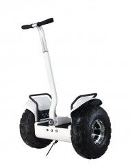 We are China Segway Manufacture, Electric self Balancing Scooter Factory in China! professional electric chariot manufcature.