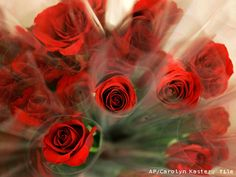 #redroses #romantic #pretty #flowers #valentinesday #hersheykiss