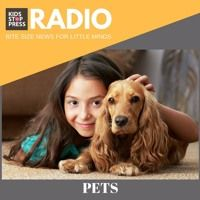 KSP Radio Episode 29: What Your Child Must Know Before You Bring Home A Pet! by Kidsstoppress on SoundCloud