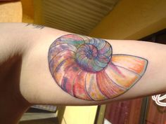 rainbow watercolor conch shell | melody mitchell at stigma ink tattoo in tampa florida its fresh , and im in love with it :)