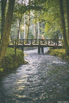 Vrelo Bosne Beautiful World, Beautiful Places, Places To Travel, Places To Visit, Countries Europe, Sarajevo Bosnia, Color Wheels, Bosnia And Herzegovina, Albania