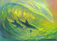 Dolphin Ocean Surfers Poster