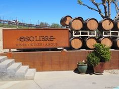 Family-friendly wineries in Paso Robles, CA -- Oso Libre offers lawn games and farm animals in a family-friendly setting