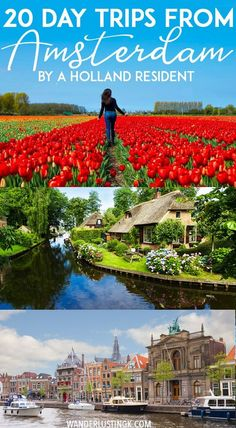 Planning your trip to the Netherlands? Tips from a resident on the 20 best day trips from Amsterdam with transportation advice for visiting other cities in the Netherlands without a tour. #travel #netherlands #europe #holland #utrecht #windmills #tulips #haarlem