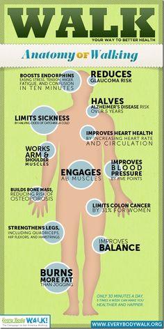 Benefits of Walking [infographic]