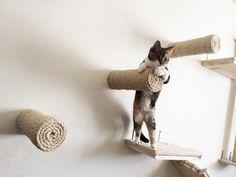 Schwimmende Sisal-Katze-Pfosten von CatastrophiCreations auf Etsy