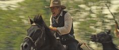 1000 Images About Celebrities And Their Quarter Horses On