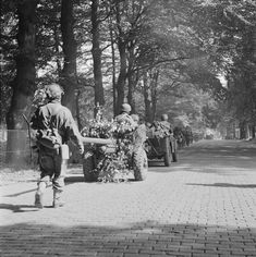 Men of the UK Battalion, South Staffordshire Regiment marching with their vehicles and equipment along a road between Oosterbeek and Arnhem, the Netherlands, 19 September (Imperial War Museum) Ww2 Photos, Photos Du, Operation Market Garden, Parachute Regiment, Normandy Invasion, Tank Destroyer, Military Operations, War Photography, Paratrooper