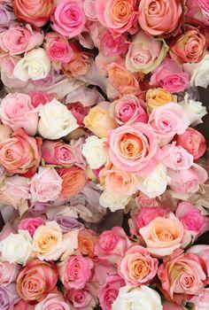 Peach Blossom Creative Studio | Decorations Sydney | Easy Weddings