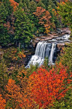 Blackwater Falls - West Virginia  جمال يأخذ بالألباب ~~~~  سبحان الله