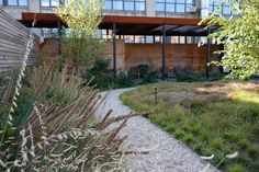 Kickstarter's roof garden, greenpoint